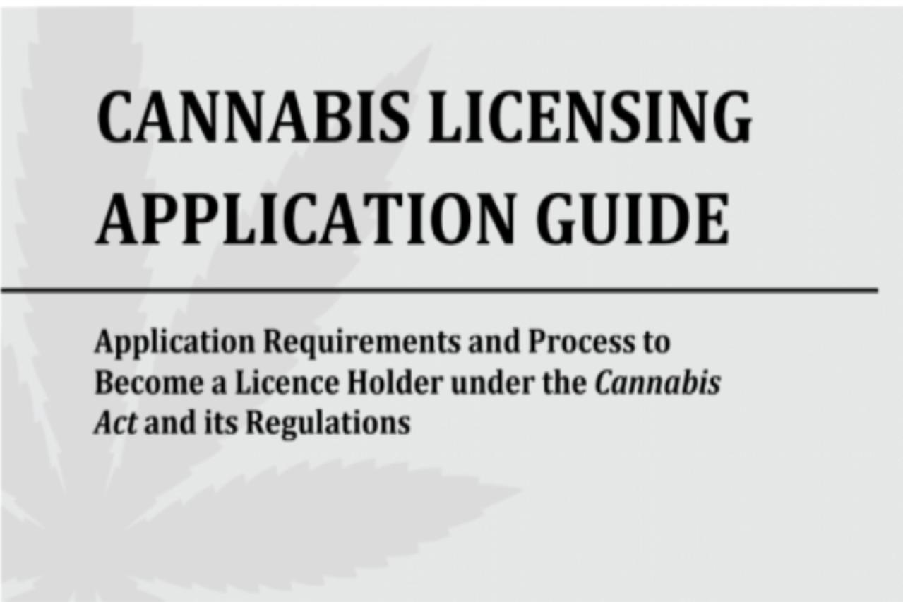 cannabis licensing application