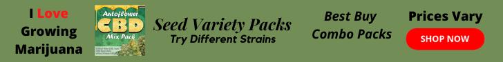 cannabis seed variety packs